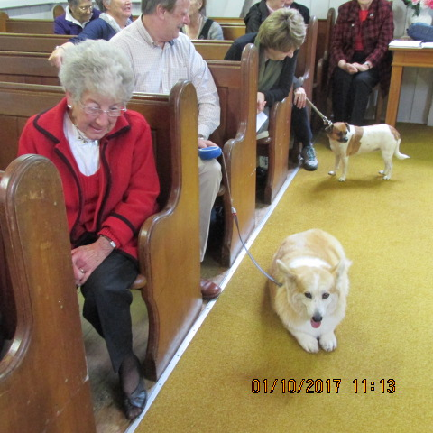 Service Animal Blessing